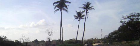 Polonnaruwa © B&N Tourismus