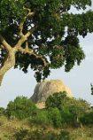 Sri Lanka Trekkingreisen © B&N Tourismus