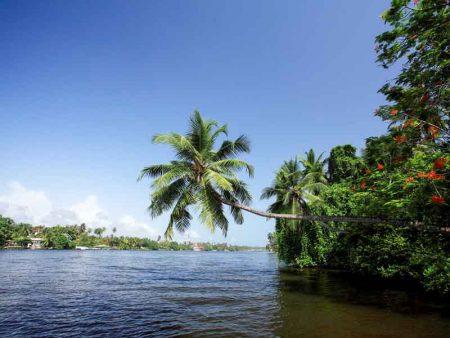 Bentota River und Mangroven © Centara Hotels & Resorts