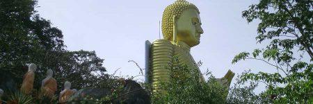 Sri Lanka Suche © B&N Tourismus